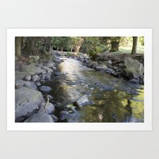 Brook waterway Art Print