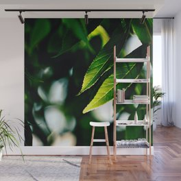 Leaflets Wall Mural