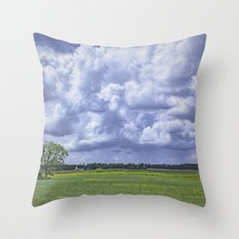 The Neighbors Throw Pillow