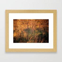 #96 Framed Art Print