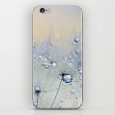 ice blue dandelion iPhone Skin