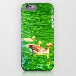 Greylag Goose and Goslings iPhone Case