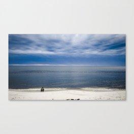 Blue-Bill Ducks Beach Canvas Print