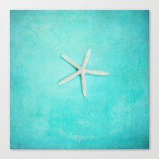 starfish-2 Canvas Print