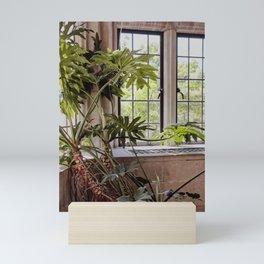 Plant in the Window, Summer Day Mini Art Print
