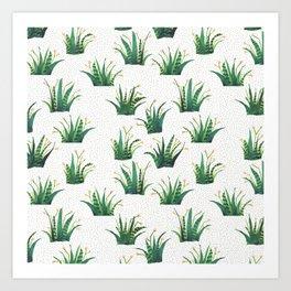 Field of Aloe Art Print