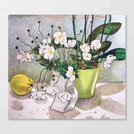 The quince Canvas Print