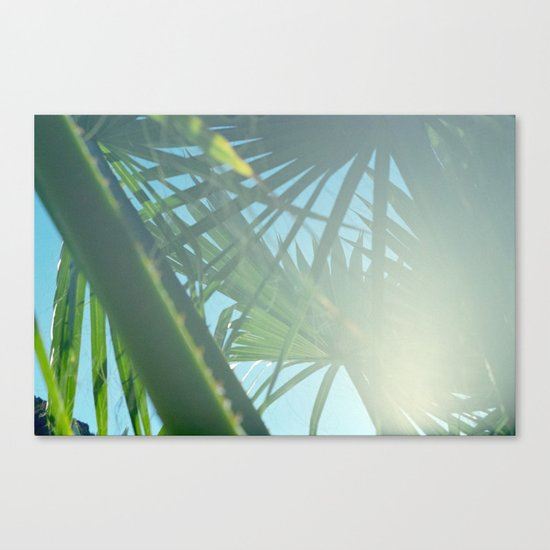 sky light Canvas Print