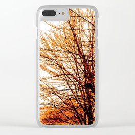Autumn in Lynnwood Clear iPhone Case