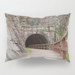 Paw Paw Tunnel Pillow Sham