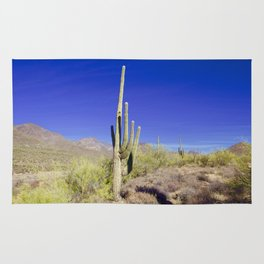 Carefree Cactus Rug