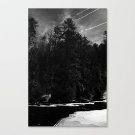 Ice in the Pines Canvas Print