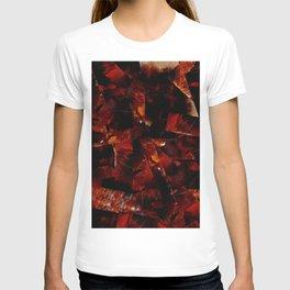 Wandering Soul T-shirt