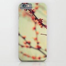 When spring was autumn... iPhone 6s Slim Case