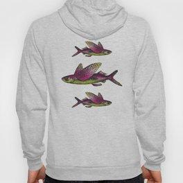 Flying Fish Pattern Hoody