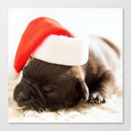 Christmas dog Canvas Print