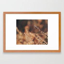 Dead of Winter Framed Art Print