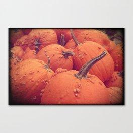 Pumpkins with Warts Canvas Print