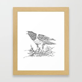 African Crow - Ria Loader Framed Art Print