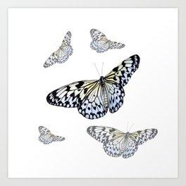 DESIGN OF FLUTTERING BLACK & WHITE BUTTERFLIES  ART Art Print