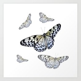 DESIGN OF FLUTTERING BLACK & WHITE BUTTERFLIES  ART Art Print