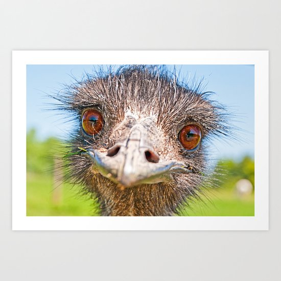 Funny emu Art Print