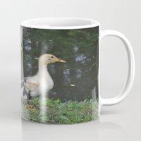 ducks Mugs featuring Ducks by Stephanie Owens