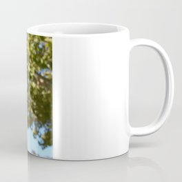 in Focus Coffee Mug