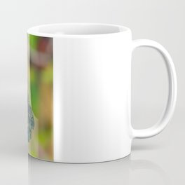 Butterfly - Caligo memnon Coffee Mug