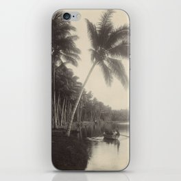 Vintage Palm Tree Photo iPhone Skin