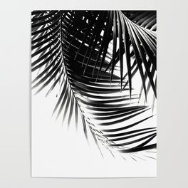 Palm Leaves Black & White Vibes #1 #tropical #decor #art #society6 Poster