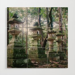 Nara Park Fine Art Print  • Travel Photography • Wall Art Wood Wall Art