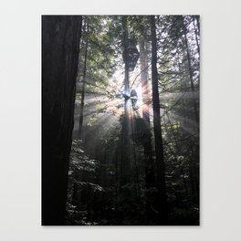 Exploding Light Canvas Print