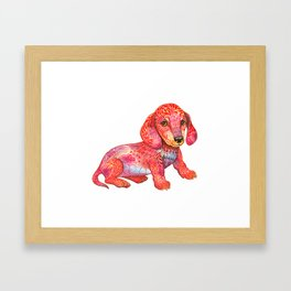 Mini Dachshund  Framed Art Print