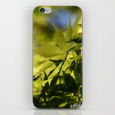 Slope iPhone & iPod Skin
