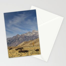 Bison The National Mammal Stationery Cards