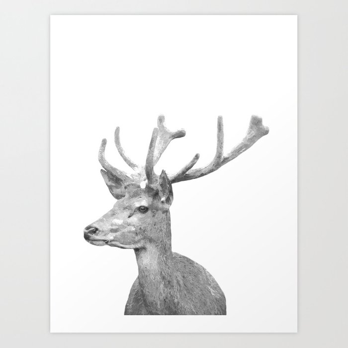Black and white deer animal portrait art print