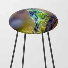 Mallee Ringneck Parrot Counter Stool
