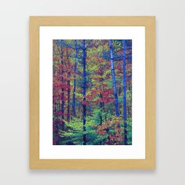 Forest - with exaggerated colors Framed Art Print