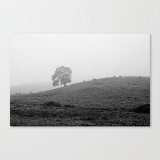 September Magic Canvas Print
