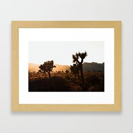 Joshua tree sunset Framed Art Print