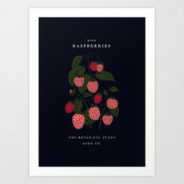 Wild raspberries seed illustration Art Print