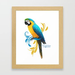 Blue and Gold Macaw Framed Art Print