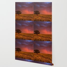Fire Within - Red Sky and Rainbow Over Lone Tree on Great Plains Wallpaper