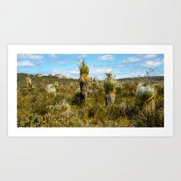 Waychinicup National Park, Western Australia Art Print