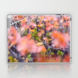 Colorful twigs Laptop & iPad Skin