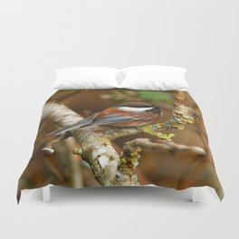 Chestnut-Backed Chickadee in the Cherry Tree Duvet Cover
