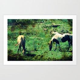 Buckskin and Pinto Art Print