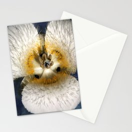 Mariposa Lily 2 Stationery Cards