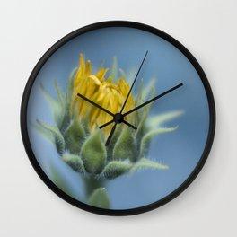 Seeds of Hope Wall Clock
